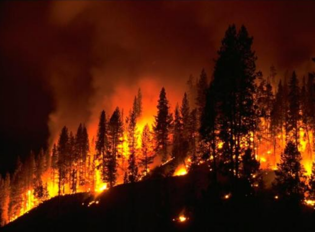 how to prepare your home for wildfire season