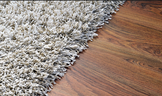 wet damaged rug